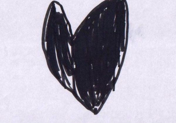 משמעות הצבע השחור בציורי ילדים